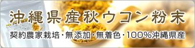 沖縄県産ウコン粉末